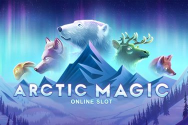 Arctic Magic  Spielautomat