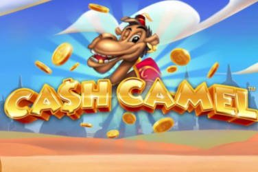 Cash Camel iSoftBet Spielautomat