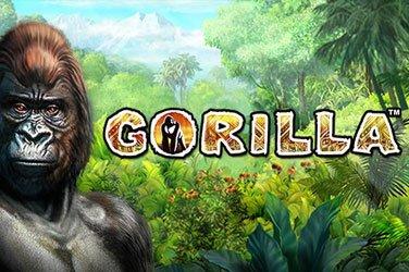 Gorilla Novomatic Spielautomat