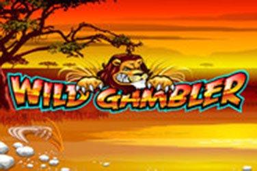 Wild Gambler Playtech Spielautomat